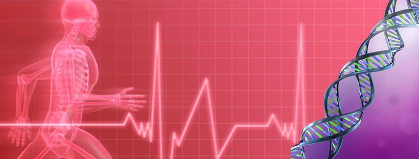Beeinflussen unsere Gene wirklich die Gesundheit?