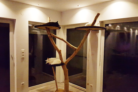 DIY: Natur-Kratzbaum