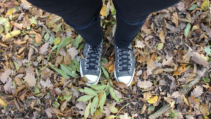 Autumn & Winter Favorites